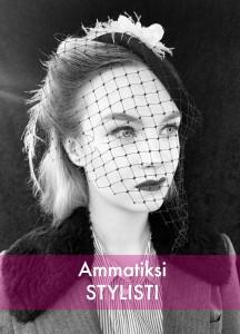 Ammatti5